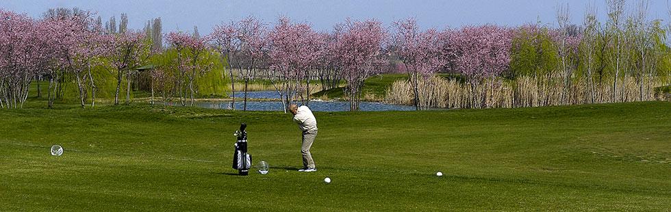 campo-golf_home